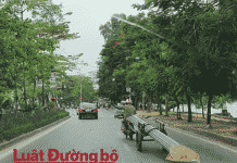 khong-nop-phat-nguoi-vi-pham-giao-thong